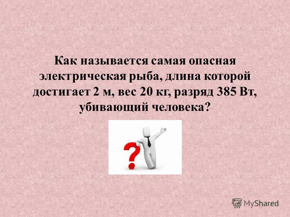 Как называется самая опасная электрическая рыба, длина которой достигает 2 м, вес 20 кг, разряд 385 Вт, убивающий человека?
