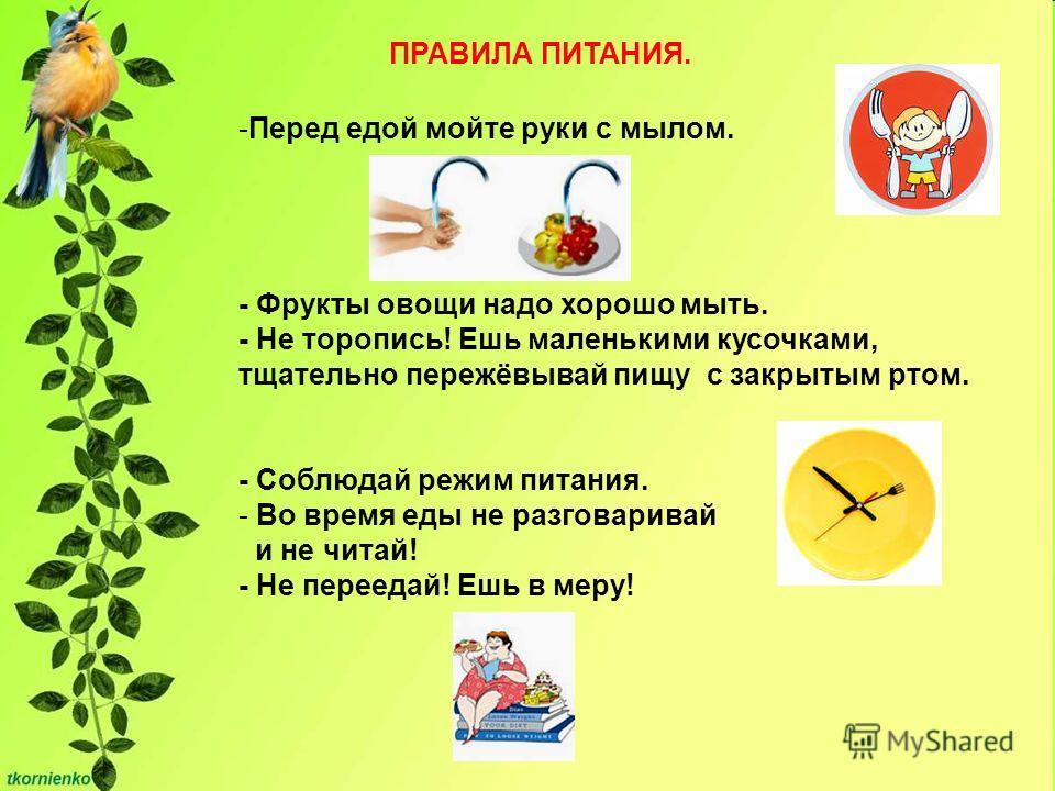 ПРАВИЛА ПИТАНИЯ. -Перед едой мойте руки с мылом. - Фрукты овощи надо хорошо мыть. - Не торопись! Ешь маленькими кусочками, тщательно пережёвывай пищу с закрытым ртом. - Соблюдай режим питания. - Во время еды не разговаривай и не читай! - Не переедай!