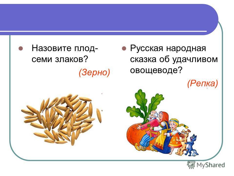 Назовите плод- семи злаков? (Зерно) Русская народная сказка об удачливом овощеводе? (Репка)