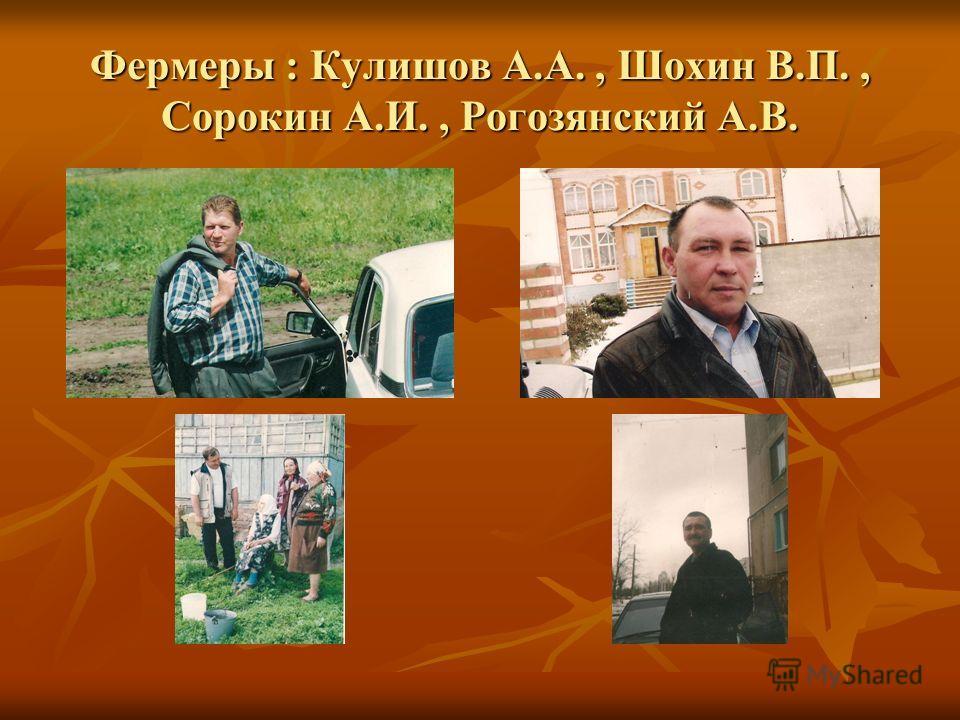 Фермеры : Кулишов А.А., Шохин В.П., Сорокин А.И., Рогозянский А.В.