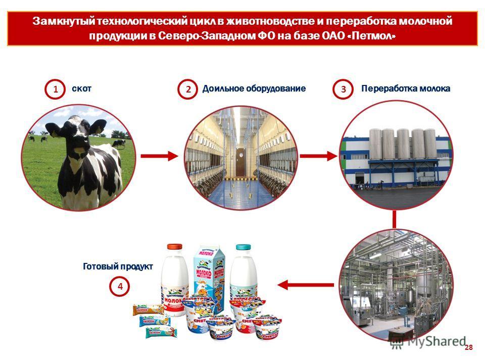 Замкнутый технологический цикл в животноводстве и переработка молочной продукции в Северо-Западном ФО на базе ОАО «Петмол» скот 12 Доильное оборудование 3 Переработка молока 4 Готовый продукт 28