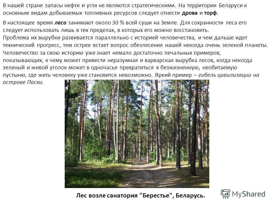 В нашей стране запасы нефти и угля не являются стратегическими. На территории Беларуси к основным видам добываемых топливных ресурсов следует отнести дрова и торф. Проблема их вырубки развивается параллельно с историей человечества, и чем дальше идет