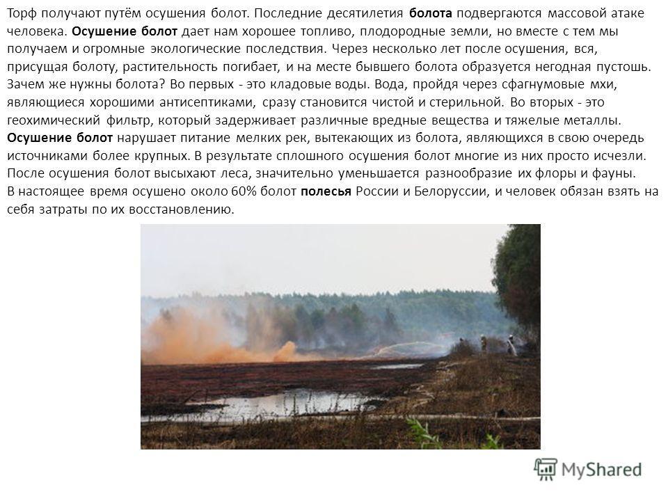 Торф получают путём осушения болот. Последние десятилетия болота подвергаются массовой атаке человека. Осушение болот дает нам хорошее топливо, плодородные земли, но вместе с тем мы получаем и огромные экологические последствия. Через несколько лет п