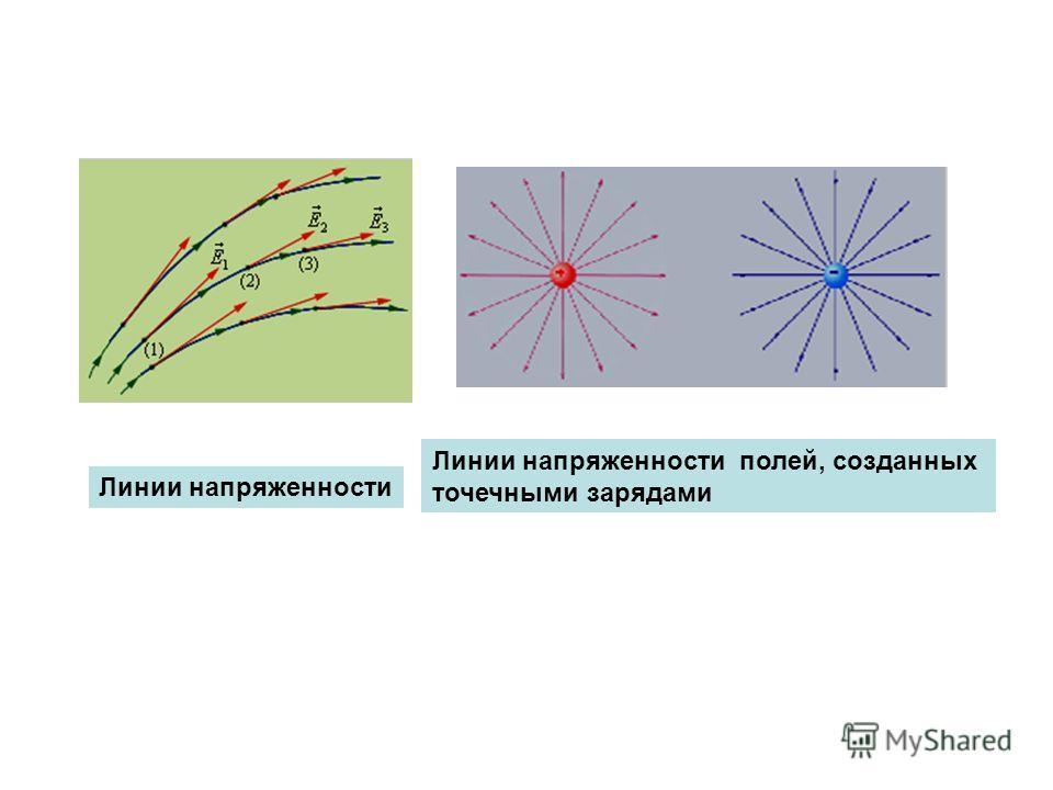 Линии напряженности Линии напряженности полей, созданных точечными зарядами