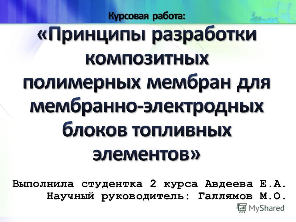 Выполнила студентка 2 курса Авдеева Е.А. Научный руководитель: Галлямов М.О.