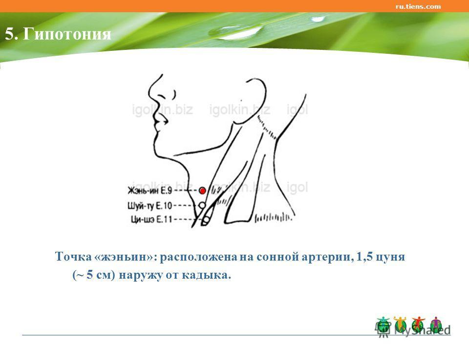 ru.tiens.com 5. Гипотония Точка «жэньин»: расположена на сонной артерии, 1,5 цуня (~ 5 см) наружу от кадыка.