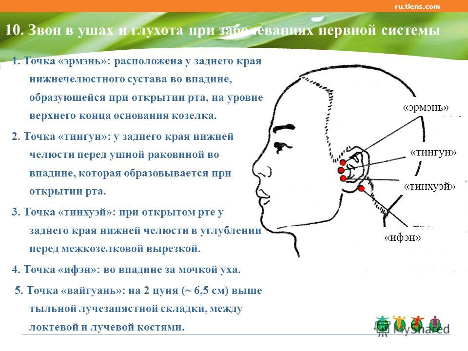 ru.tiens.com 10. Звон в ушах и глухота при заболеваниях нервной системы «эрмэнь» «тингун» «тинхуэй» «ифэн» 1. Точка «эрмэнь»: расположена у заднего края нижнечелюстного сустава во впадине, образующейся при открытии рта, на уровне верхнего конца основ
