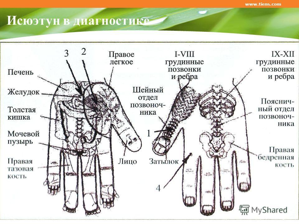 Исюэтун в диагностике www.tiens.com