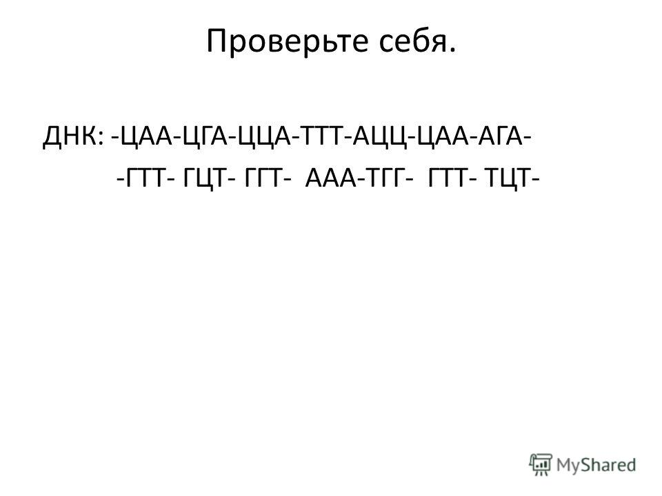 Проверьте себя. ДНК: -ЦАА-ЦГА-ЦЦА-ТТТ-АЦЦ-ЦАА-АГА- -ГТТ- ГЦТ- ГГТ- ААА-ТГГ- ГТТ- ТЦТ-