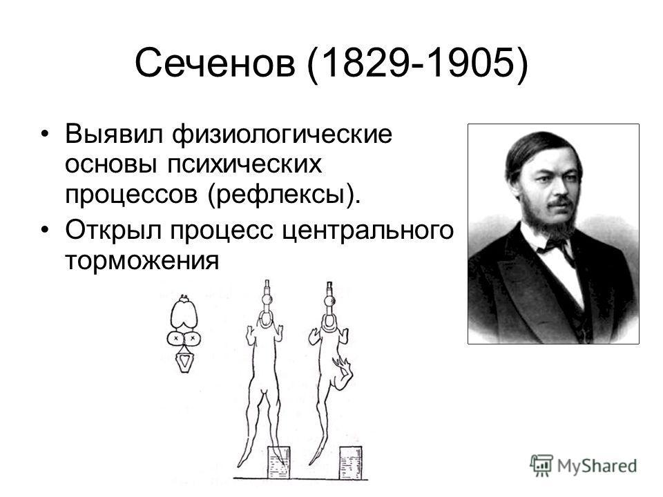 Сеченов (1829-1905) Выявил физиологические основы психических процессов (рефлексы). Открыл процесс центрального торможения