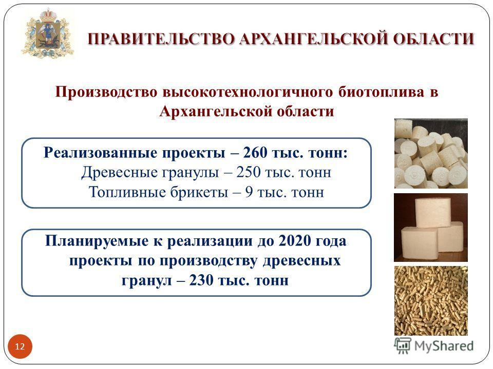 12 Производство высокотехнологичного биотоплива в Архангельской области Реализованные проекты – 260 тыс. тонн: Древесные гранулы – 250 тыс. тонн Топливные брикеты – 9 тыс. тонн Планируемые к реализации до 2020 года проекты по производству древесных г