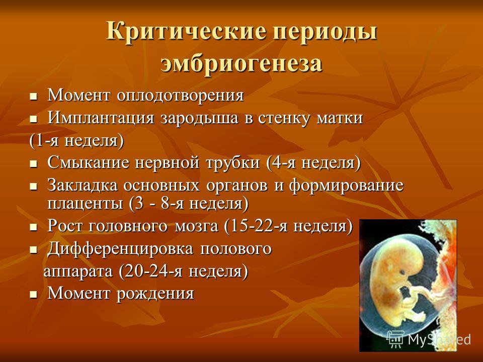 Критические периоды эмбриогенеза Момент оплодотворения Момент оплодотворения Имплантация зародыша в стенку матки Имплантация зародыша в стенку матки (1-я неделя) Смыкание нервной трубки (4-я неделя) Смыкание нервной трубки (4-я неделя) Закладка основ