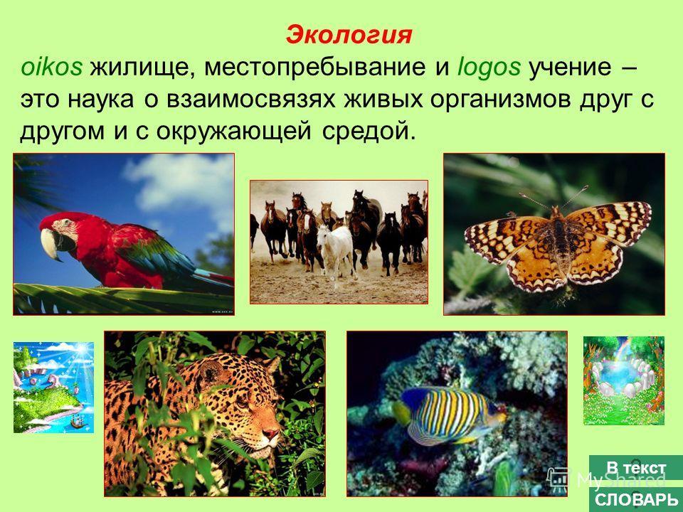 Экология oikos жилище, местопребывание и logos учение – это наука о взаимосвязях живых организмов друг с другом и с окружающей средой. СЛОВАРЬ В текст