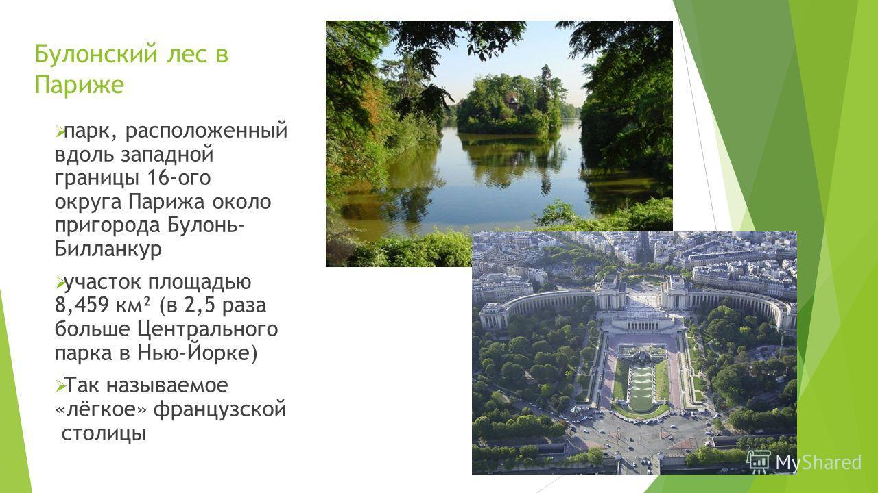 Булонский лес в Париже парк, расположенный вдоль западной границы 16-ого округа Парижа около пригорода Булонь- Билланкур участок площадью 8,459 км² (в 2,5 раза больше Центрального парка в Нью-Йорке) Так называемое «лёгкое» французской столицы