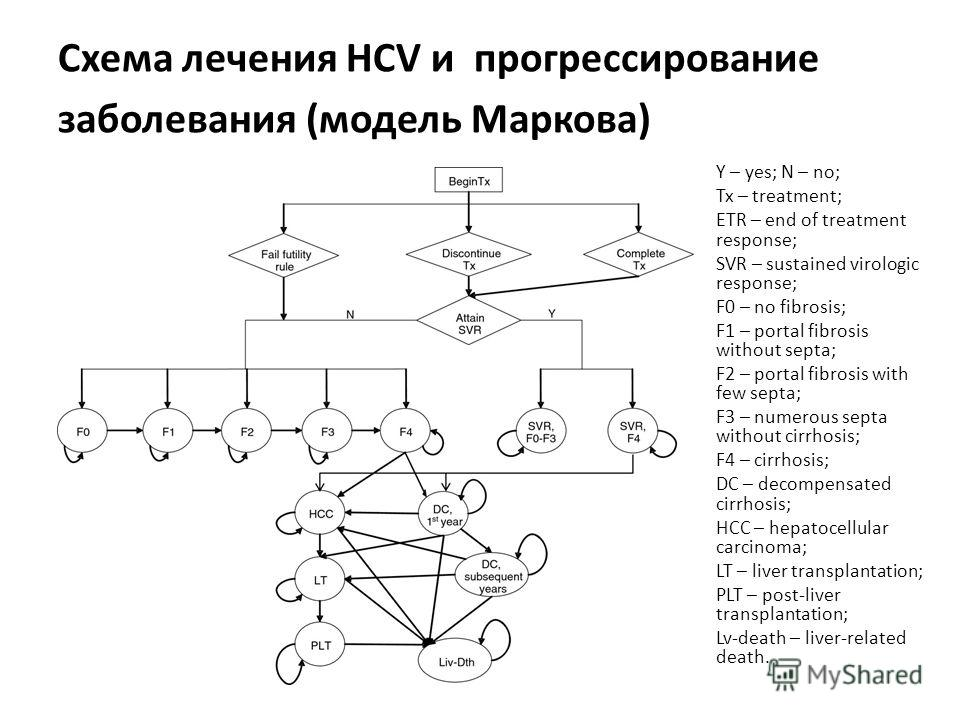 Схема лечения HCV и прогрессирование заболевания (модель Маркова) Y – yes; N – no; Tx – treatment; ETR – end of treatment response; SVR – sustained virologic response; F0 – no fibrosis; F1 – portal fibrosis without septa; F2 – portal fibrosis with fe