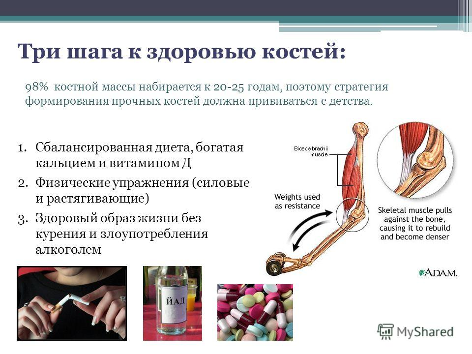 98% костной массы набирается к 20-25 годам, поэтому стратегия формирования прочных костей должна прививаться с детства. 1. Сбалансированная диета, богатая кальцием и витамином Д 2. Физические упражнения (силовые и растягивающие) 3. Здоровый образ жиз