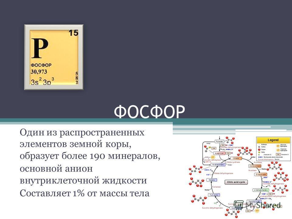 ФОСФОР Один из распространенных элементов земной коры, образует более 190 минералов, основной анион внутриклеточной жидкости Составляет 1% от массы тела