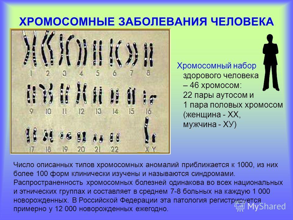 ХРОМОСОМНЫЕ ЗАБОЛЕВАНИЯ ЧЕЛОВЕКА Хромосомный набор здорового человека – 46 хромосом: 22 пары аутосом и 1 пара половых хромосом (женщина - ХХ, мужчина - ХУ) Число описанных типов хромосомных аномалий приближается к 1000, из них более 100 форм клиничес