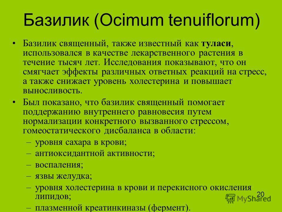 Базилик (Ocimum tenuiflorum) Базилик священный, также известный как туласи, использовался в качестве лекарственного растения в течение тысяч лет. Исследования показывают, что он смягчает эффекты различных ответных реакций на стресс, а также снижает у