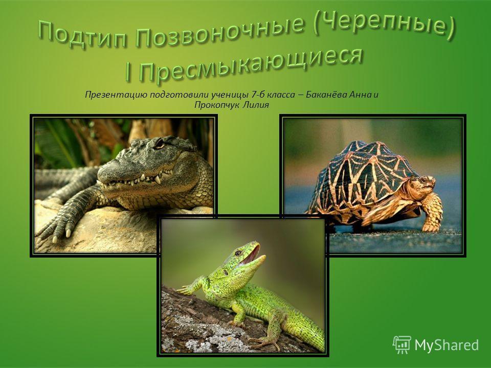 Презентацию подготовили ученицы 7-б класса – Баканёва Анна и Прокопчук Лилия