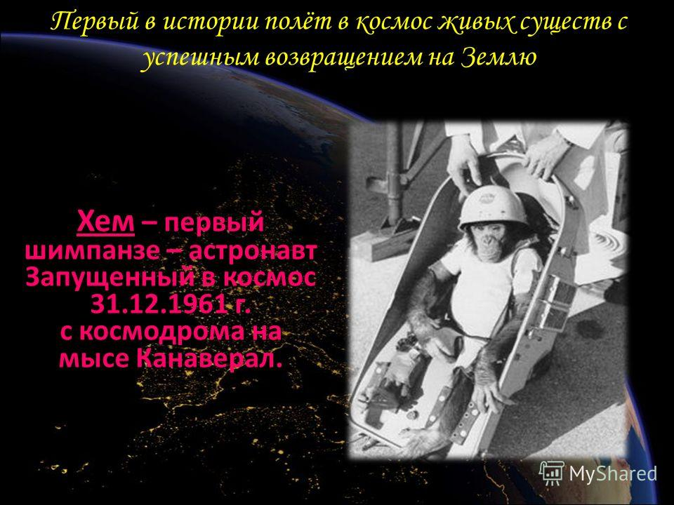 Первый в истории полёт в космос живых существ с успешным возвращением на Землю Хем – первый шимпанзе – астронавт Запущенный в космос 31.12.1961 г. с космодрома на мысе Канаверал.