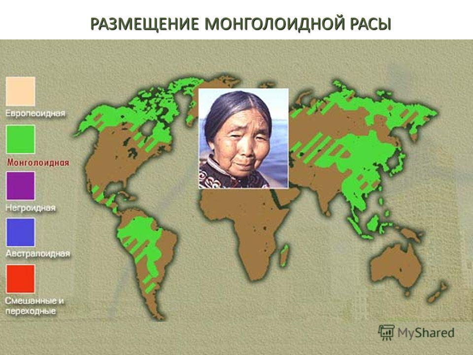 РАЗМЕЩЕНИЕ МОНГОЛОИДНОЙ РАСЫ