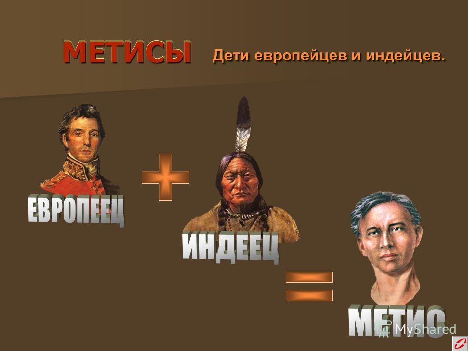 МЕТИСЫМЕТИСЫ Дети европейцев и индейцев. Дети европейцев и индейцев.