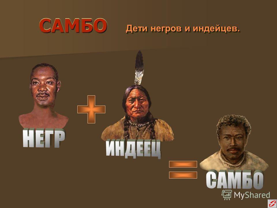 САМБОСАМБО Дети негров и индейцев. Дети негров и индейцев.
