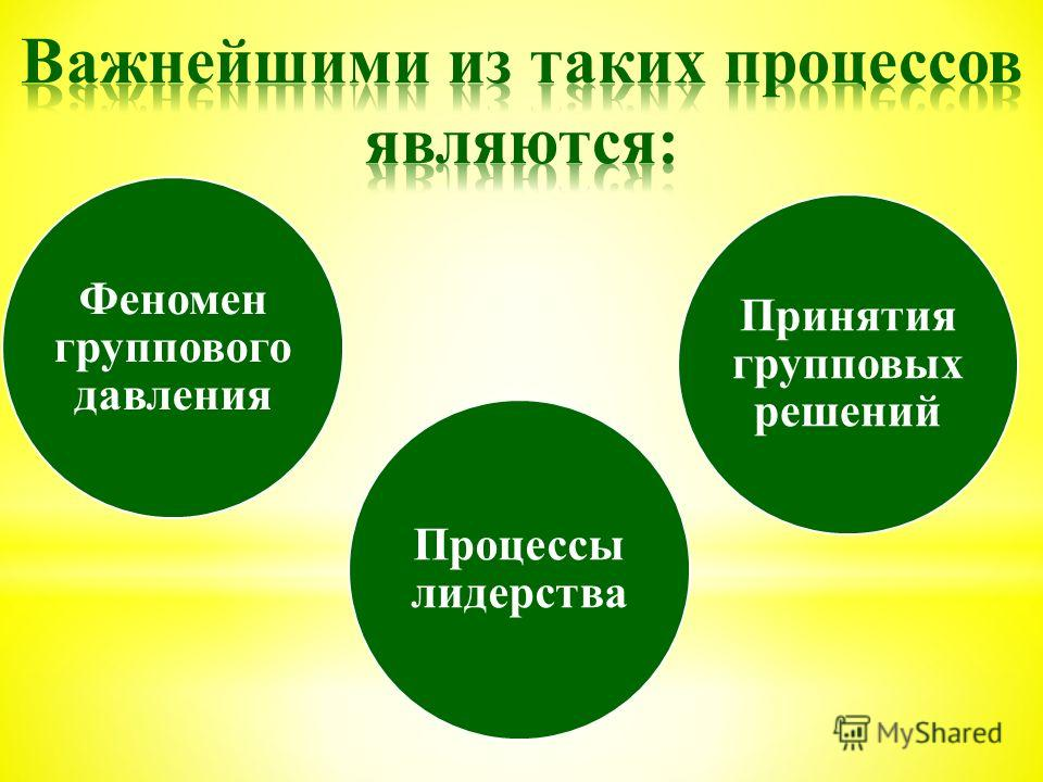 Феномен группового давления Процессы лидерства Принятия групповых решений