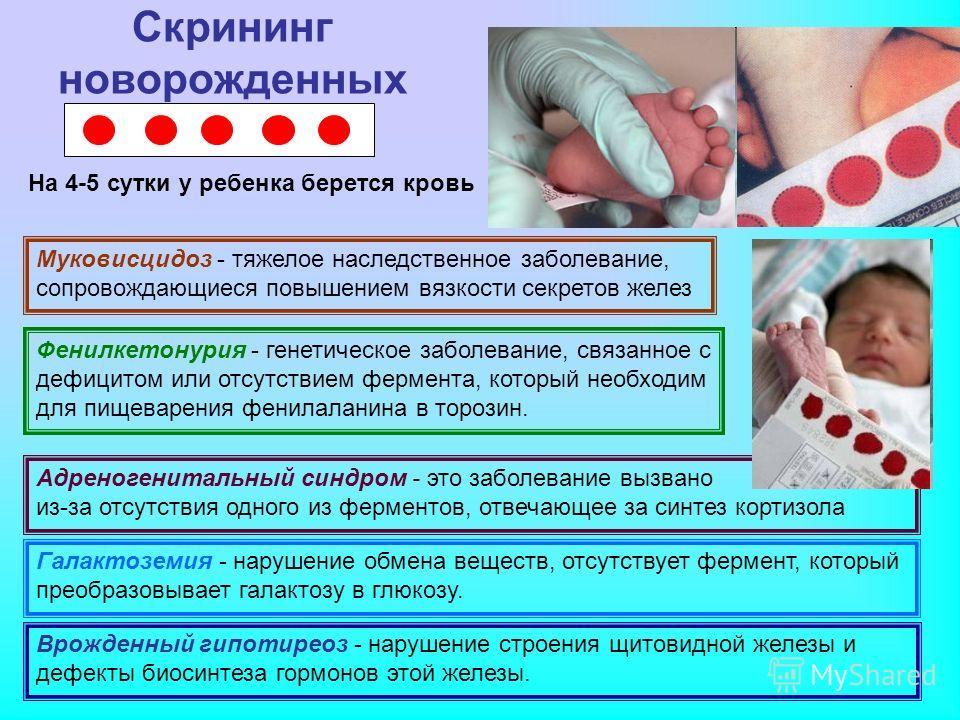 Скрининг новорожденных Врожденный гипотиреоз - нарушение строения щитовидной железы и дефекты биосинтеза гормонов этой железы. Фенилкетонурия - генетическое заболевание, связанное с дефицитом или отсутствием фермента, который необходим для пищеварени