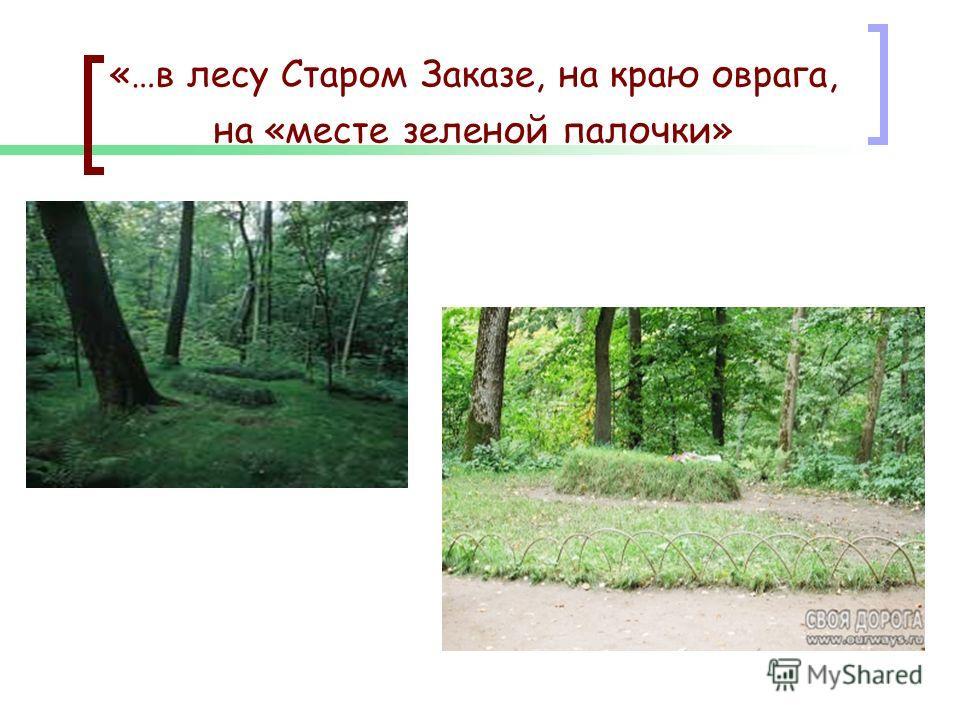 «…в лесу Старом Заказе, на краю оврага, на «месте зеленой палочки»