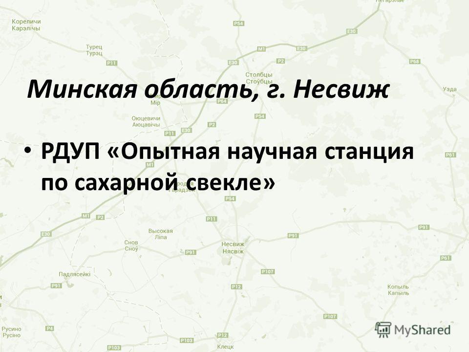 РДУП «Опытная научная станция по сахарной свекле» Минская область, г. Несвиж