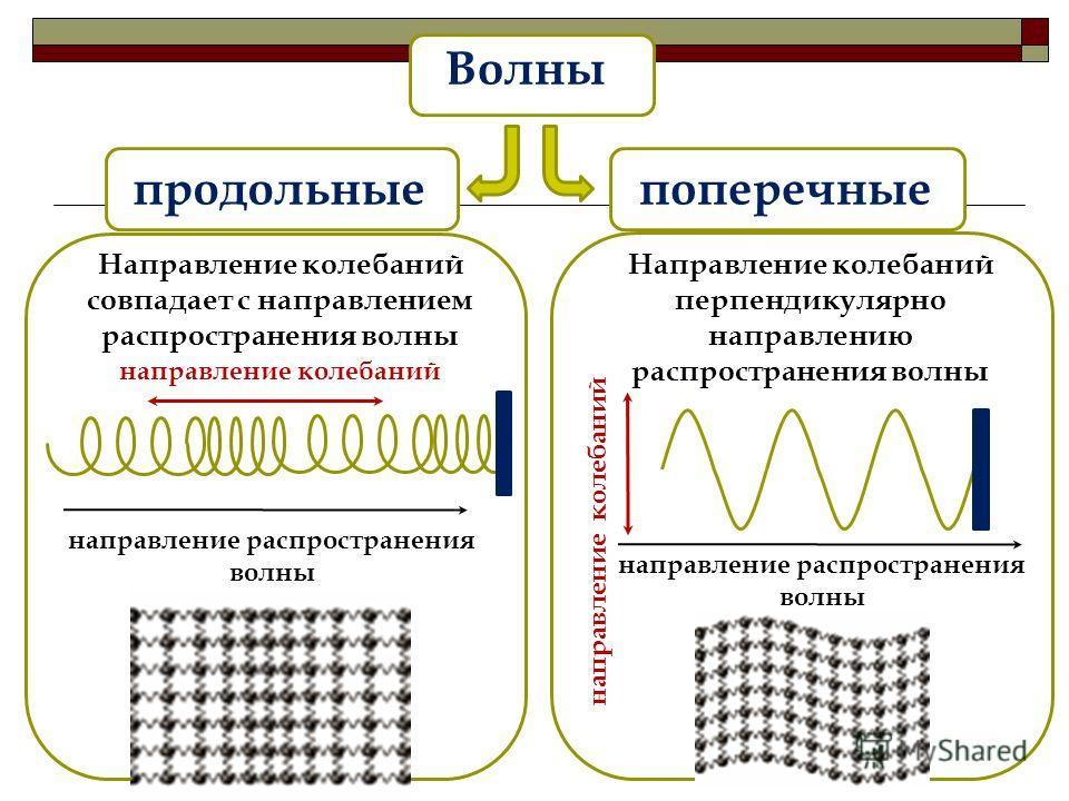 Волны продольныепоперечные направление колебаний направление распространения волны направление колебаний направление распространения волны Направление колебаний совпадает с направлением распространения волны Направление колебаний перпендикулярно напр