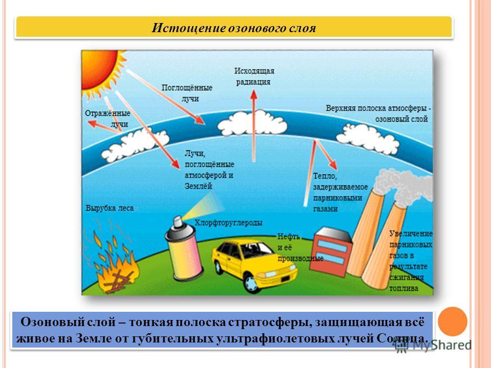 Истощение озонового слоя Озоновый слой – тонкая полоска стратосферы, защищающая всё живое на Земле от губительных ультрафиолетовых лучей Солнца.