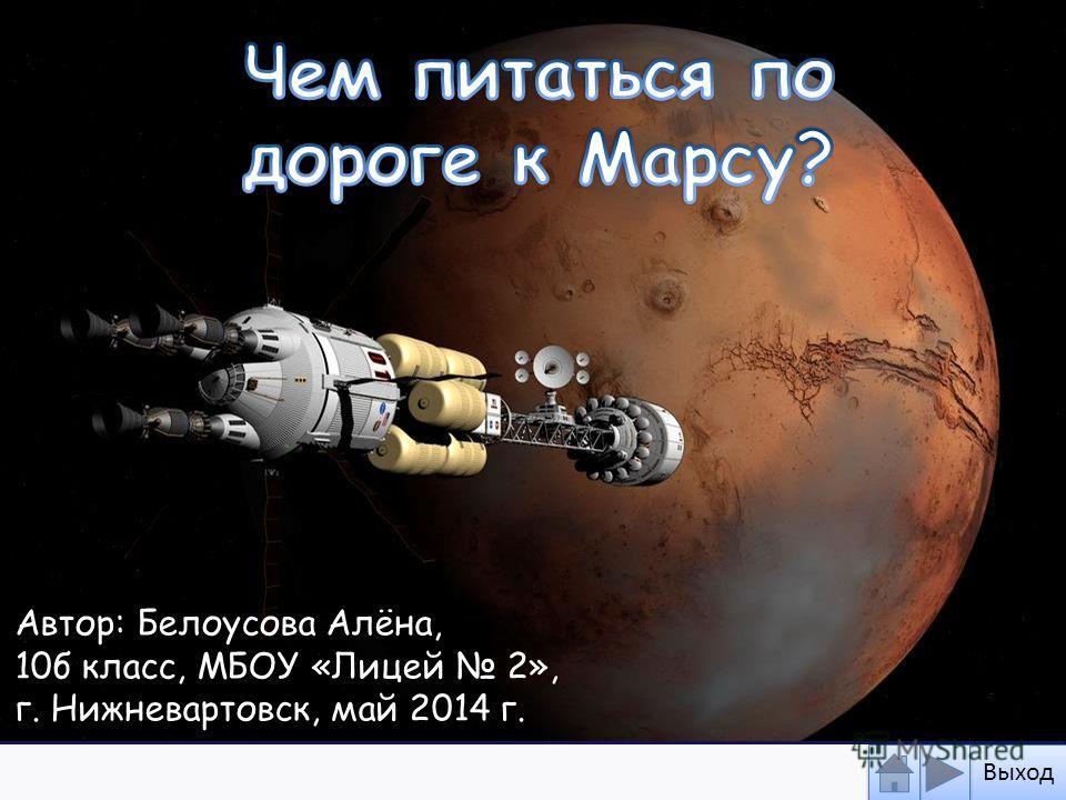 Автор: Белоусова Алёна, 10 б класс, МБОУ «Лицей 2», г. Нижневартовск, май 2014 г. Выход