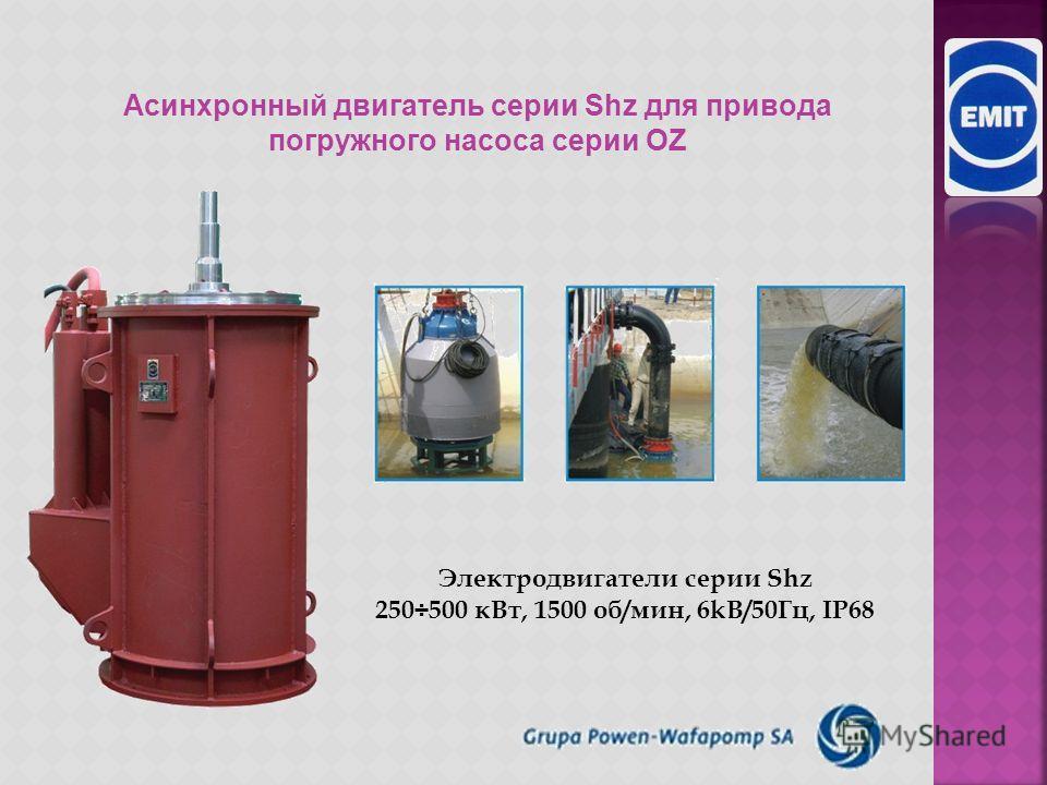 Электродвигатели в взрывозащищенной конструкции Тип: dSLfr 800H8C-E EEx d I Mb / Ex d II (CH4) Gb P N -1200 к Вт n N - 6000 V M N - 750 об/мин (2p=8) Масса 10000 k