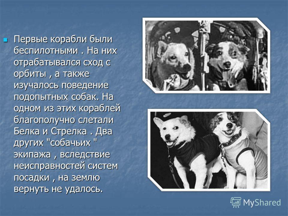Первые корабли были беспилотными. На них отрабатывался сход с орбиты, а также изучалось поведение подопытных собак. На одном из этих кораблей благополучно слетали Белка и Стрелка. Два других