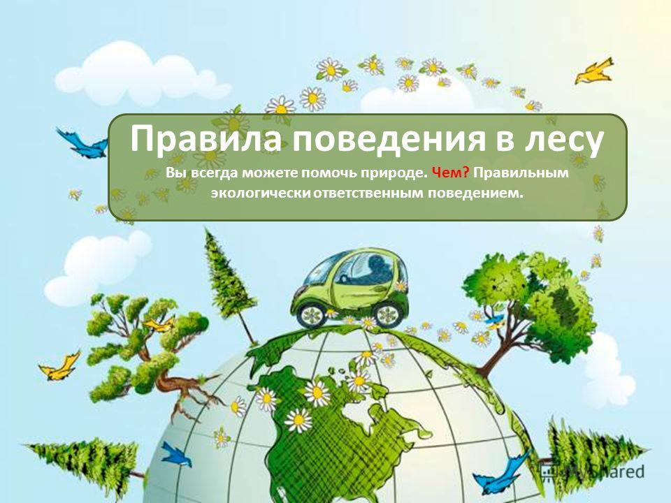 Правила поведения в лесу Вы всегда можете помочь природе. Чем? Правильным экологически ответственным поведением.