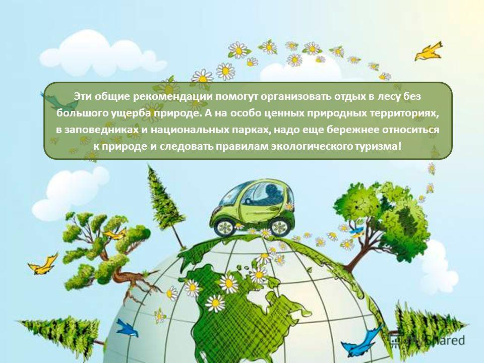 Эти общие рекомендации помогут организовать отдых в лесу без большого ущерба природе. А на особо ценных природных территориях, в заповедниках и национальных парках, надо еще бережнее относиться к природе и следовать правилам экологического туризма!