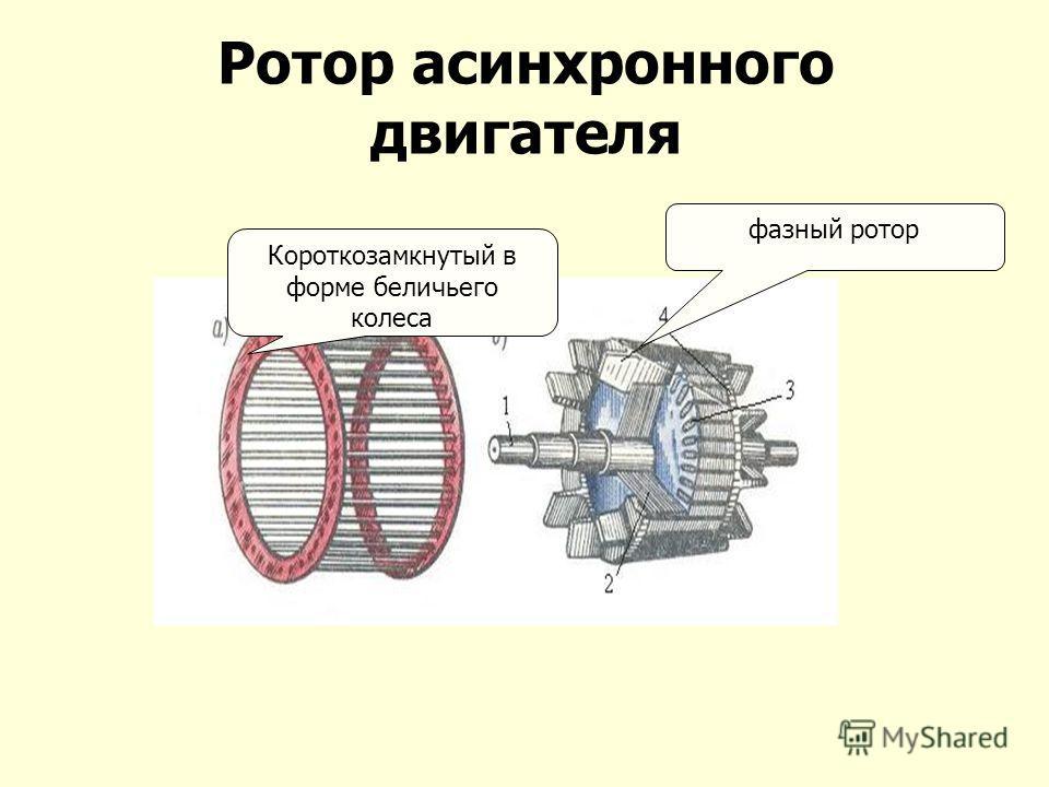 Ротор асинхронного двигателя Короткозамкнутый в форме беличьего колеса фазный ротор