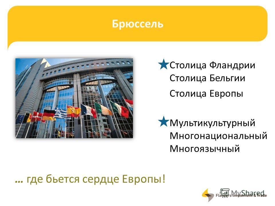 Брюссель Столица Фландрии Столица Бельгии Столица Европы Мультикультурный Многонациональный Многоязычный … где бьется сердце Европы!