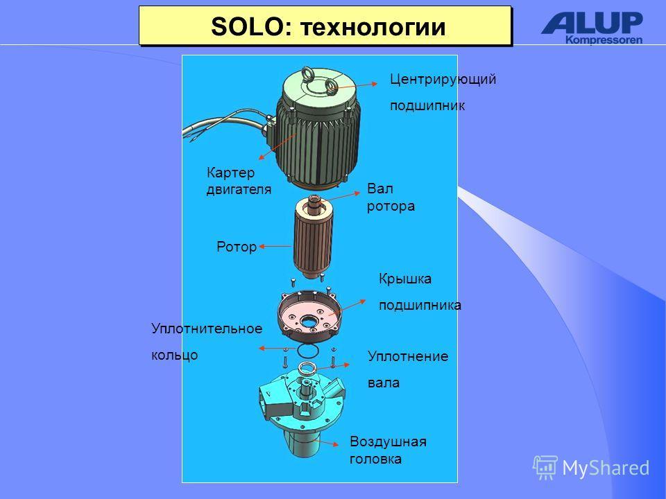 Воздушная головка Ротор Вал ротора Картер двигателя SOLO: технологии Центрирующий подшипник Уплотнение вала Уплотнительное кольцо Крышка подшипника