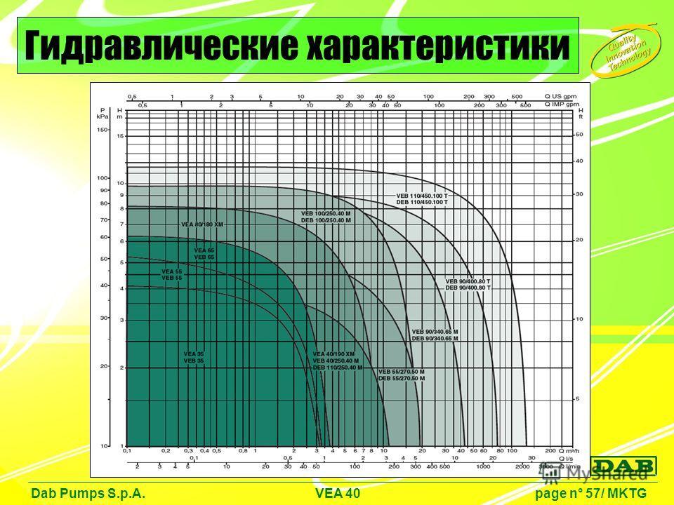 Dab Pumps S.p.A. VEA 40 page n° 57/ MKTG Гидравлические характеристики