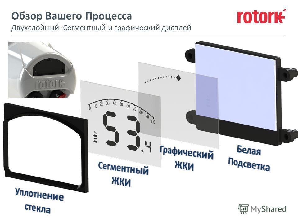 Обзор Вашего Процесса Двухслойный- Сегментный и графический дисплей