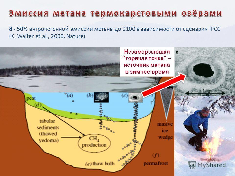 8 - 50% антропогенной эмиссии метана до 2100 в зависимости от сценария IPCC (K. Walter et al., 2006, Nature) Незамерзающаягорячая точка – источник метана в зимнее время