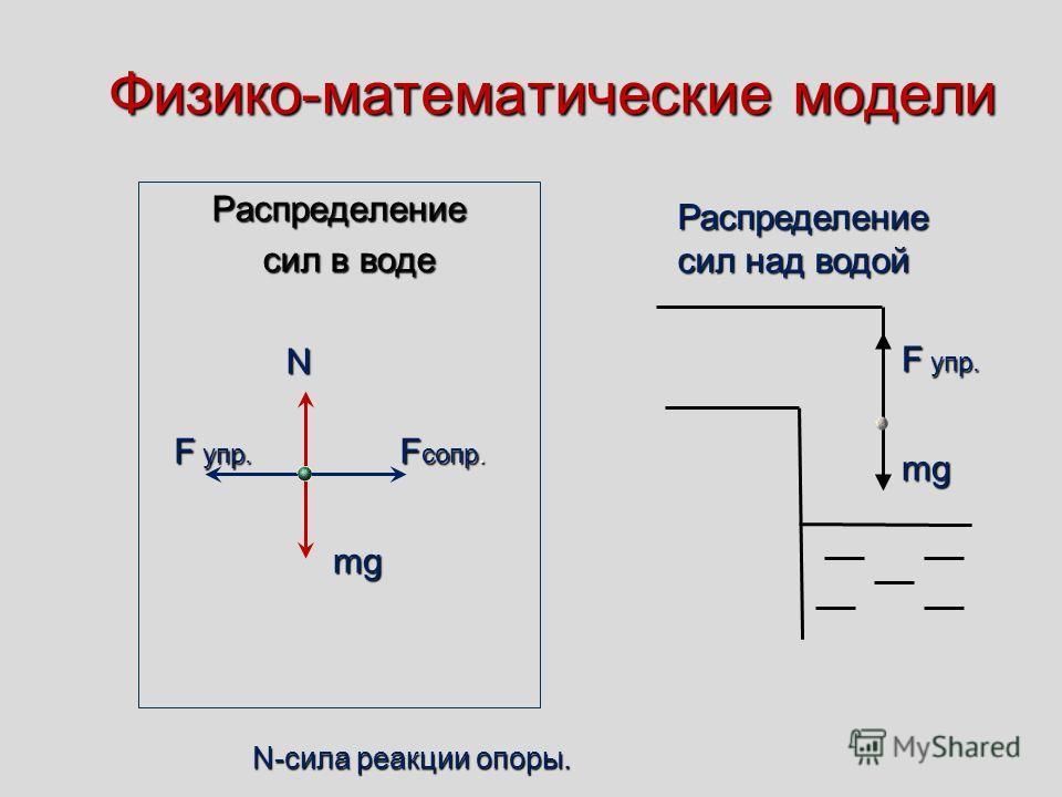 Физико-математические модели Распределение сил в воде сил в воде N mg F упр. F сопр. F упр. mg Распределение Распределение сил над водой сил над водой N-сила реакции опоры.