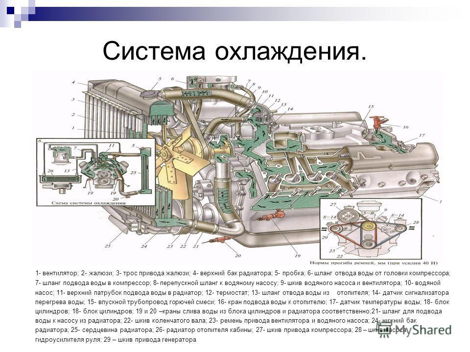 Система охлаждения. 1- вентилятор; 2- жалюзи; 3- трос привода жалюзи; 4- верхний бак радиатора; 5- пробка; 6- шланг отвода воды от головки компрессора; 7- шланг подвода воды в компрессор; 8- перепускной шланг к водяному насосу; 9- шкив водяного насос