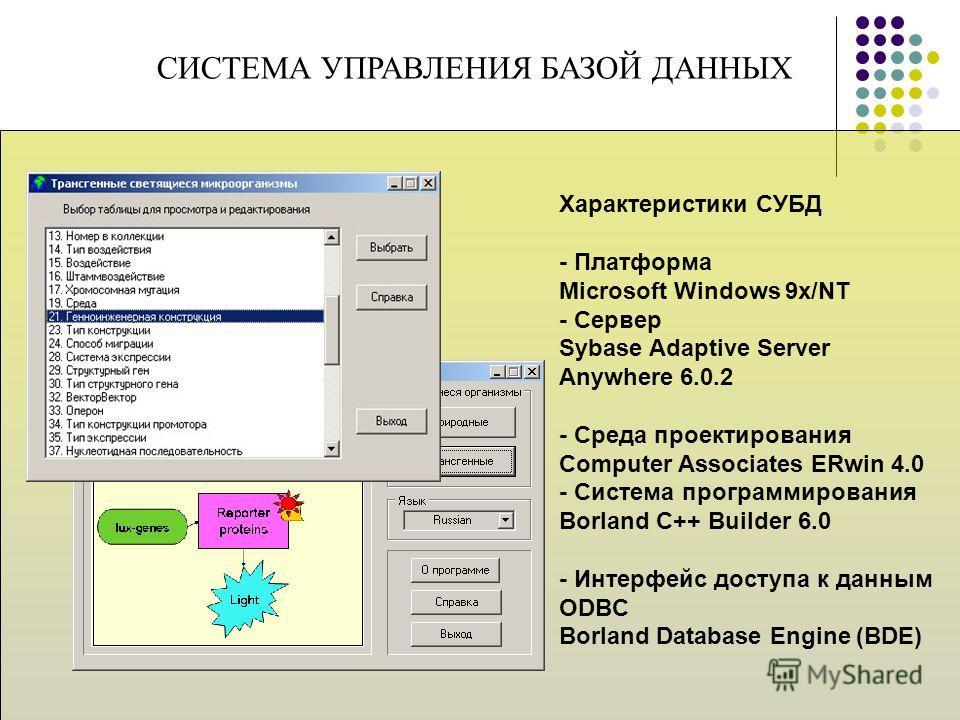 СИСТЕМА УПРАВЛЕНИЯ БАЗОЙ ДАННЫХ Характеристики СУБД - Платформа Microsoft Windows 9x/NT - Сервер Sybase Adaptive Server Anywhere 6.0.2 - Среда проектирования Computer Associates ERwin 4.0 - Система программирования Borland C++ Builder 6.0 - Интерфейс