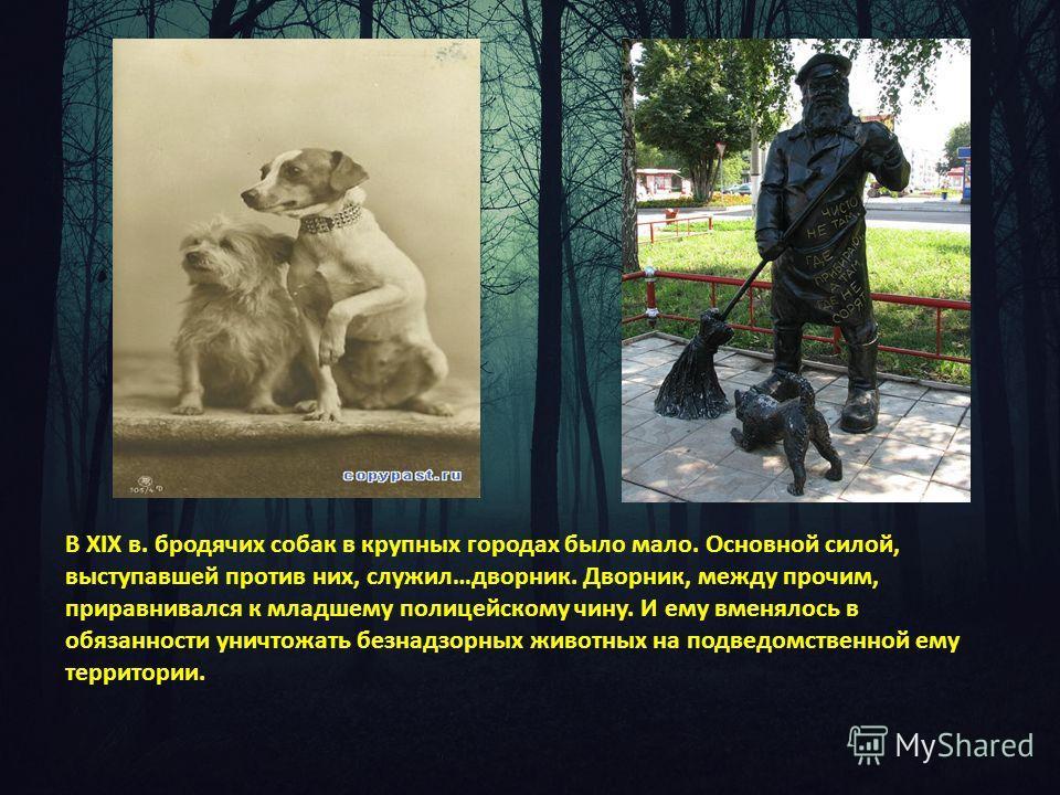 В XIX в. бродячих собак в крупных городах было мало. Основной силой, выступавшей против них, служил…дворник. Дворник, между прочим, приравнивался к младшему полицейскому чину. И ему вменялось в обязанности уничтожать безнадзорных животных на подведом