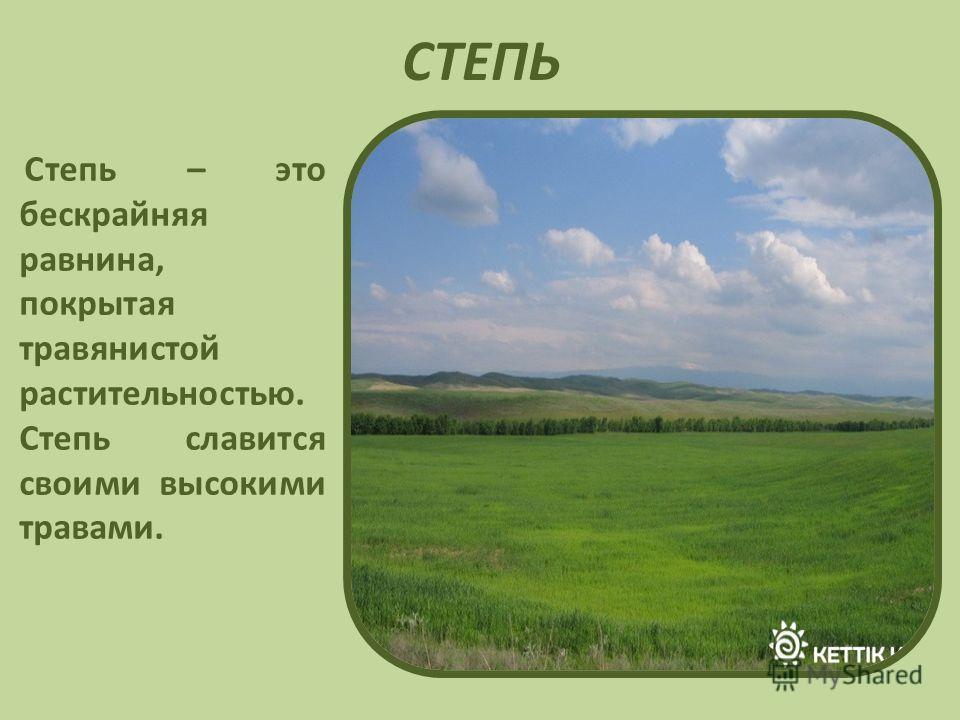 СТЕПЬ Степь – это бескрайняя равнина, покрытая травянистой растительностью. Степь славится своими высокими травами.
